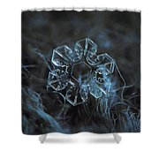 The Core, Panoramic Version Shower Curtain