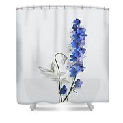 Consolida Shower Curtain
