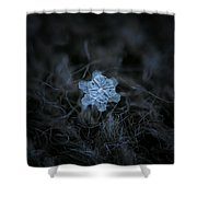 December 18 2015 - Snowflake 2 Shower Curtain by Alexey Kljatov