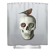 Skull And Bird Shower Curtain