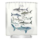 Sharks - Landscape Format Shower Curtain
