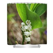 Return Of Happiness Shower Curtain