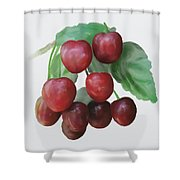 Sour Cherry Shower Curtain