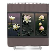 Lotus Collection II Shower Curtain