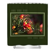 Grevillea Ground Cover Shower Curtain