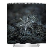Stars In My Pocket Like Grains Of Sand Shower Curtain