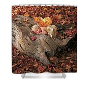 Woodland Fairy Shower Curtain by Anne Geddes
