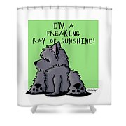 Ash Cairn Sunshine Shower Curtain