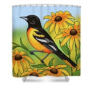 Maryland State Bird Oriole And Daisy Flower Shower Curtain by Crista Forest