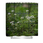 Raindrops On The Garden Fence Shower Curtain