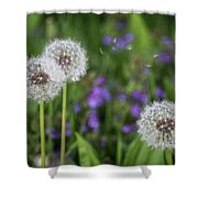 Three Wishes Shower Curtain