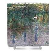 Swan On Town Lake - Now Lady Bird Lake Shower Curtain