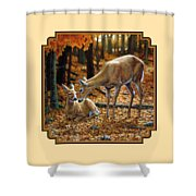 Whitetail Deer - Autumn Innocence 2 Shower Curtain by Crista Forest