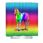 Colorful Rainbow Paint Horse Shower Curtain