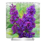 Watercolor Lilac Shower Curtain