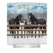 Black Quarter Horses In Snow Shower Curtain by Crista Forest