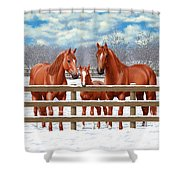 Red Sorrel Quarter Horses In Snow Shower Curtain