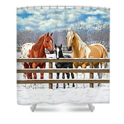 Chestnut Appaloosa Palomino Pinto Black Foal Horses In Snow Shower Curtain by Crista Forest