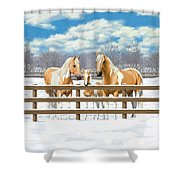 Palomino Paint Horses In Snow Shower Curtain