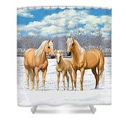Palomino Horses In Winter Pasture Shower Curtain