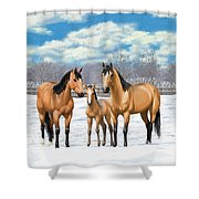 Buckskin Horses In Winter Pasture Shower Curtain