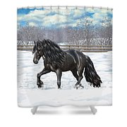 Black Friesian Horse In Snow Shower Curtain by Crista Forest