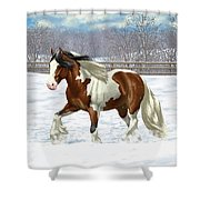 Bay Pinto Gypsy Vanner In Snow Shower Curtain