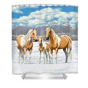Palomino Paint Horses In Winter Pasture Shower Curtain