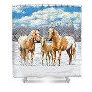 Palomino Appaloosa Horses In Winter Shower Curtain