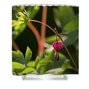 Heart Space Shower Curtain