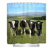 Curious Cows Shower Curtain by Ivana Westin