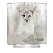 Adorable Blue-eyed Oriental Cat  Shower Curtain