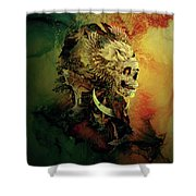 Skull Lord IIi Shower Curtain