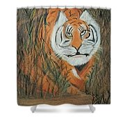 Roaring Tiger James Shower Curtain