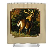 Whitetail Buck - Indecision Shower Curtain by Crista Forest