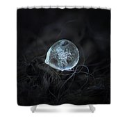 Drop Of Ice Rain Shower Curtain
