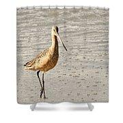 Sandpiper Strolling - Horizontal Shower Curtain