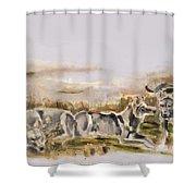 Totem Wolf Sunset Shower Curtain