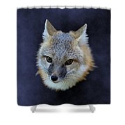 Foxburst Shower Curtain