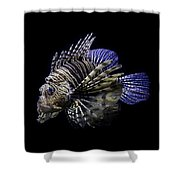Majestic Lionfish Shower Curtain