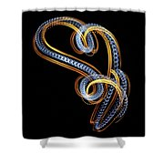 Tic 20180226-7753v Shower Curtain