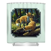 Red Foxes - Sibling Rivalry Shower Curtain