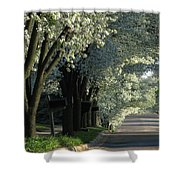 Shady Grove Shower Curtain