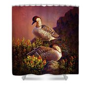 First Light Nene Hawaiian Goose Shower Curtain