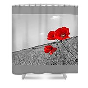 Poppy Fields 2 Black And White Shower Curtain