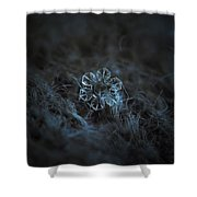 Snowflake Photo - The Core Shower Curtain