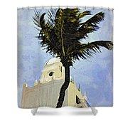 Aruba Palm Shower Curtain