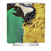 Aruba Yellow Shower Curtain