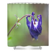 As Life Unfolds Shower Curtain