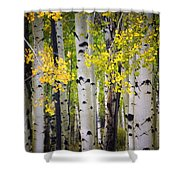 As the aspens start to turn tote bag for sale by saija - Bathroom items that start with l ...